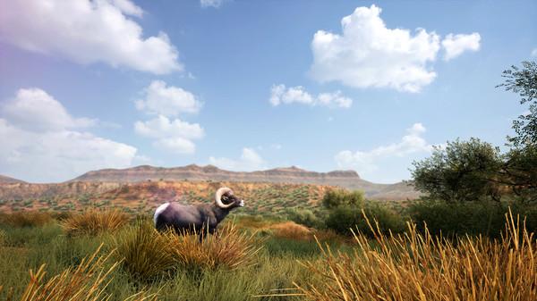 《狩猎模拟2 Hunting Simulator 2》中文版百度云迅雷下载20201214